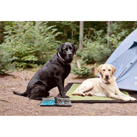 Nomad Pet Travel Bowls – Pacific Blue 4