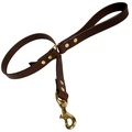 Plain Leather Dog Lead - Chocolate with Brass