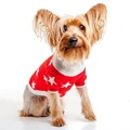 Stella Star Print Cashmere Dog Sweater - Red