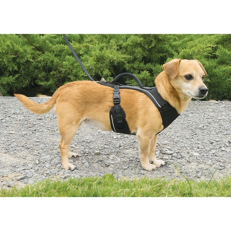 EasySport™ Dog Harness – Black 6