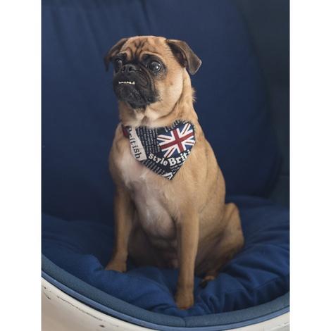 Union Jack Indiana Dog Bandana 6
