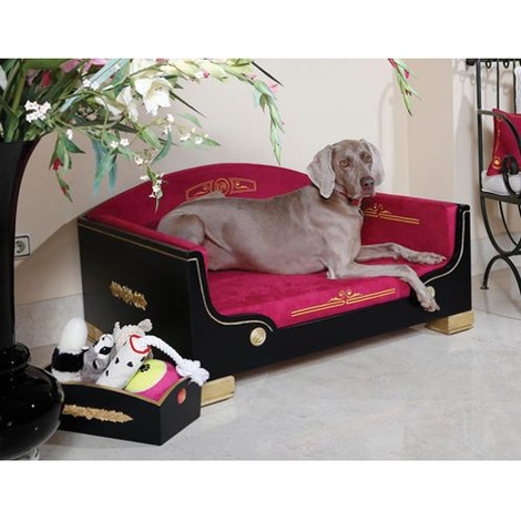 Classic Black & Gold Dog Bed 4