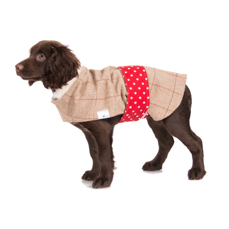 Barnaby Tweed Dog Coat 3