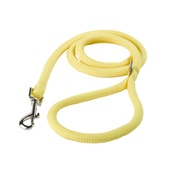 Yellow Dog - Braided Dog Lead – Daffodil Yellow