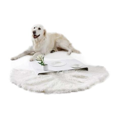 Room Service Dog Bowls & Tray 3