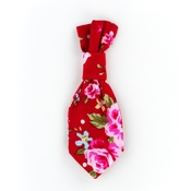 Pet Pooch Boutique - Red Vintage Dog Tie