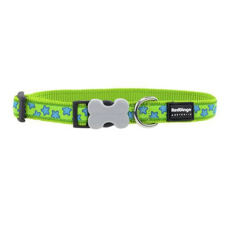 Red Dingo Patterned Dog Collar - Lime Green/Turquoise