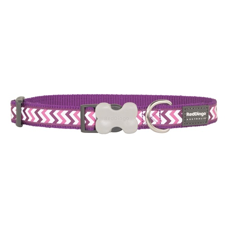 Ziggy Reflective Dog Collar – Purple
