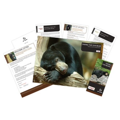 Adopt A Bear Gift Box 2