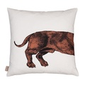 Dachshund Cushion - Orange 2