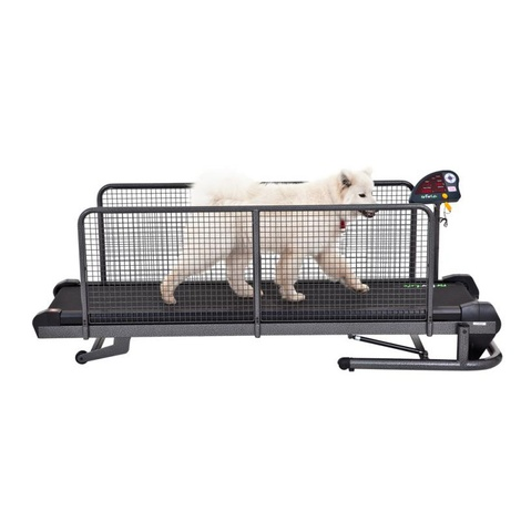 Superior Treadmill for Dogs