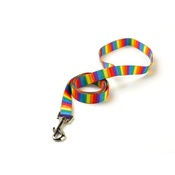 Yellow Dog - Rainbow Stripes Lead