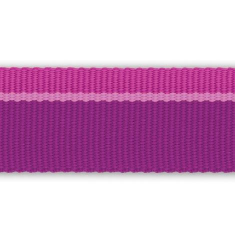 Flat out Leash - Purple Dusk 2