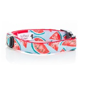 Pet Pooch Boutique - Watermelon Blue Collar