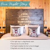 PetsPyjamas - Bell in Ticehurst Exclusive Overnight Stay Voucher