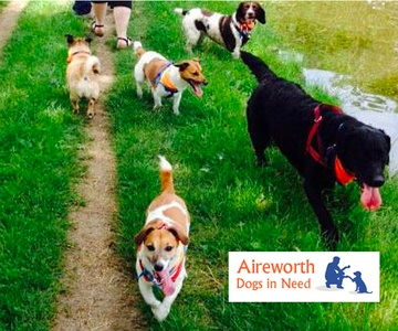 Aireworth Dogs in Need