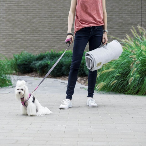 Loft Dog Travel Mat - Grey 5