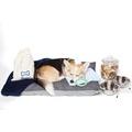 PetsPyjamas Hotel Starter Pack 6
