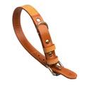 Chelsea Leather Dog Collar – Caramel & Tan 2