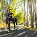 Slackline Dog Lead – Purple Dusk 6