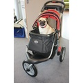 Comfort EFA Buggy - Red/Black 2