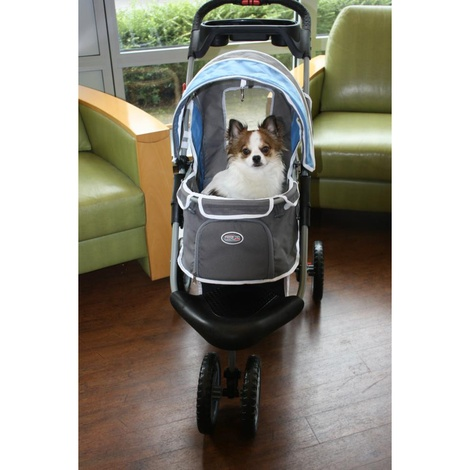 First Class Dog Buggy - Blue/Grey 2