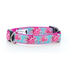 Millie Dog Collar