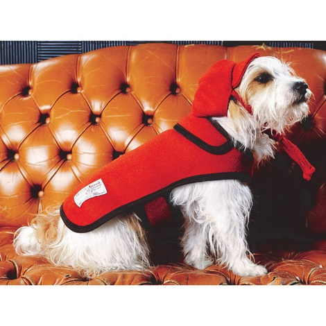 Edison Orange Harris Tweed Dog Coat 3