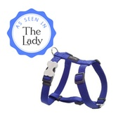 Red Dingo - Plain Dog Harness - Blue