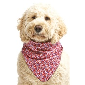 Pet Pooch Boutique - Superstar Dog Bandana