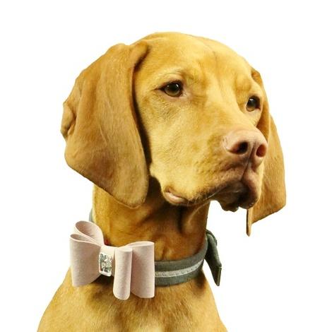 Dog Collar Bow Accessory - Marshmallow