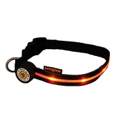 PetsGlow - Spotlight LED Dog Collar - Red