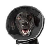 Zenpet - ProCone Recovery Cone