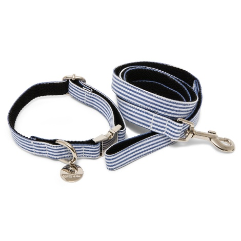 Collar & Lead Set - Chichester 2
