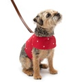 Cranberry Star Cotton Harness 2