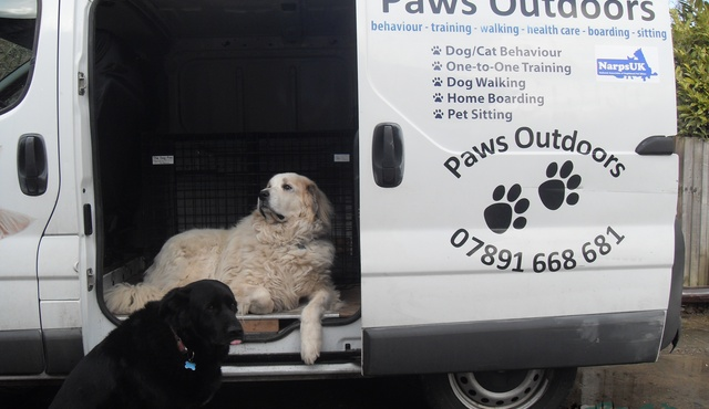 Paws Outdoors Kent