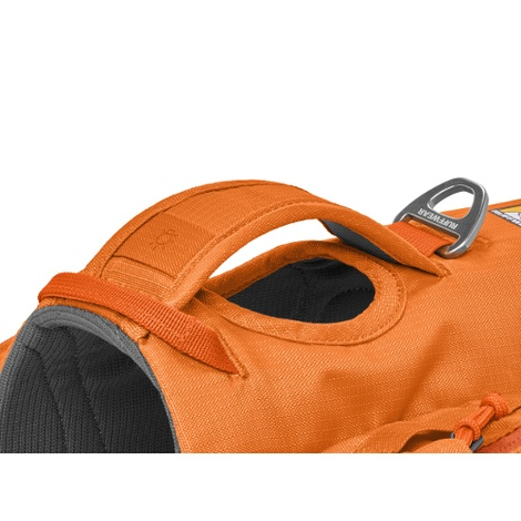 Approach Dog Pack - Orange Poppy 5