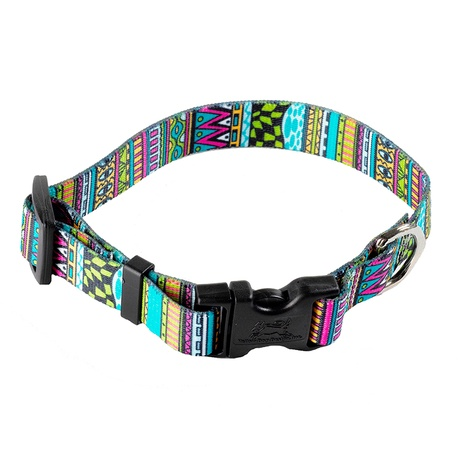 Festival Stripe Dog Collar