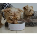Personalised Ceramic Pet Bowl 2