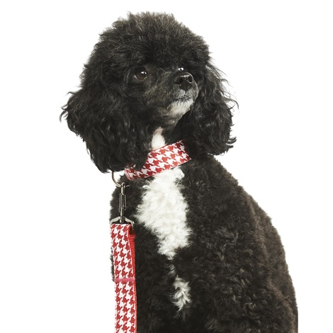 Houndstooth Dog Collar 2