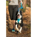 Front Range Leash - Meadow Green 4