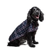 PetsPyjamas - Pawditch Blue Check Dog Coat