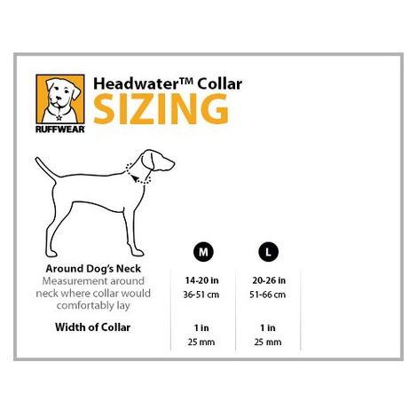 Headwater Dog Collar - Fern Green 2