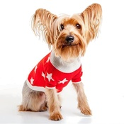 Ruby Rufus - Stella Star Print Cashmere Dog Sweater - Red