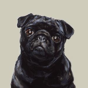 Black Pug Medium Art Print