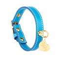 Light Blue and Gold Stitch Leather Collar