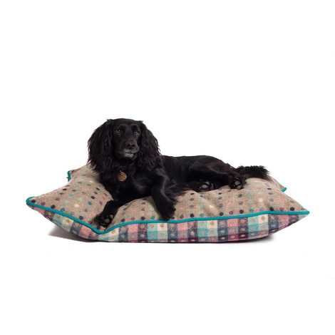 Luxury Pure Wool Dog Bed - Fawn Multispot