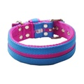 Candy Strip Collar - Fuchsia & Sky Blue 2