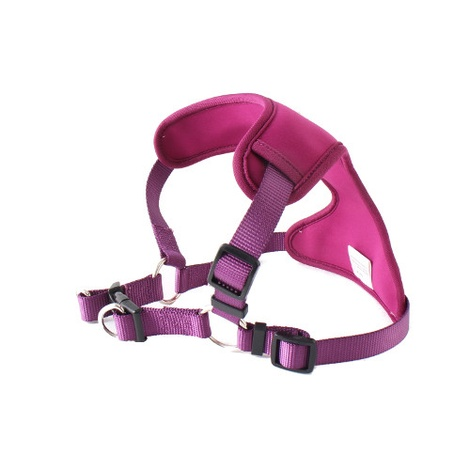 Neoflex Harness - Purple 2