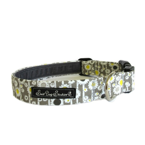 Salt Dog Studio Daisy Chain Dog Collar